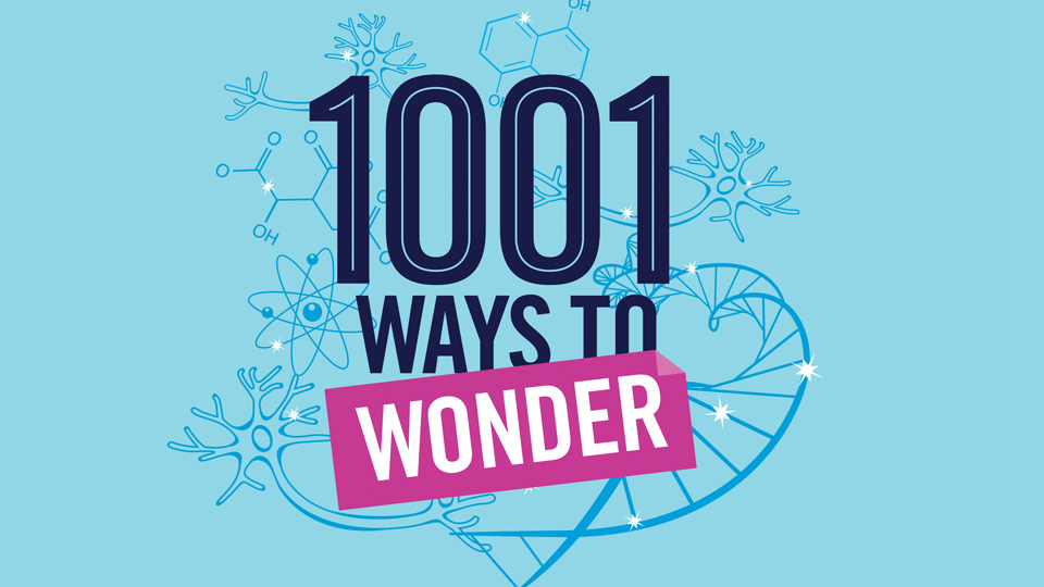 1001 WAYS TO WONDER |  science web series, in development with Pier 21 Films